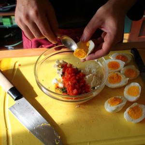 Rossi d'uovo