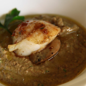 Sauteed scallops with lentil sauce