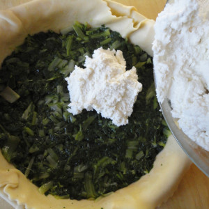 Make a layer of chard and then of ricotta