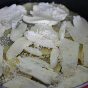 Layer of parmesan