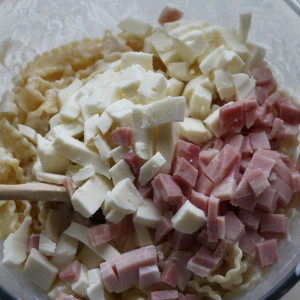 Ham and mozzarella cheese