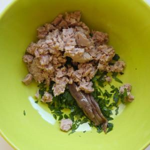 Anchovies and tuna